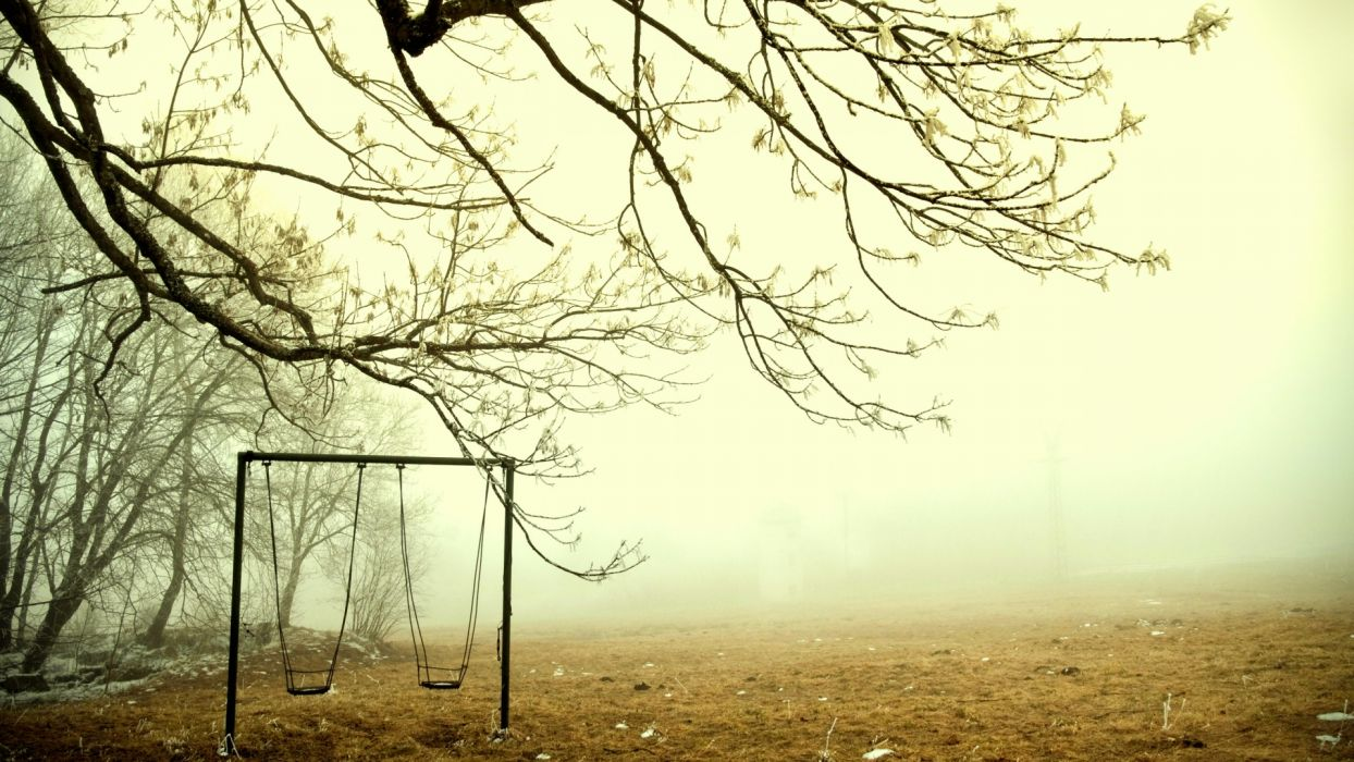 mood fog landscapes swing trees wallpaper