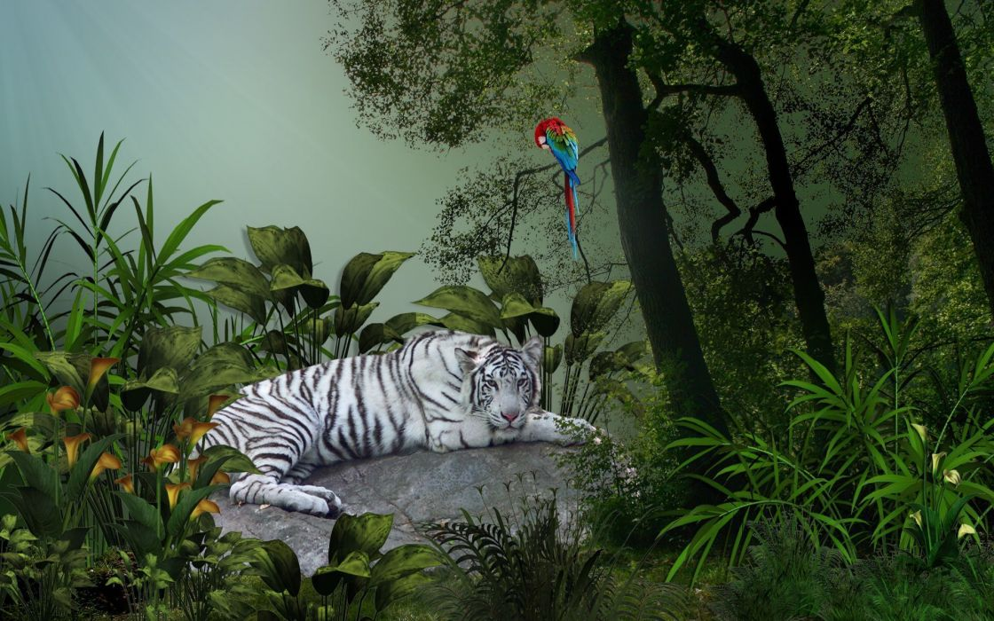 tiger birds parrot art cg fantasy trees wallpaper