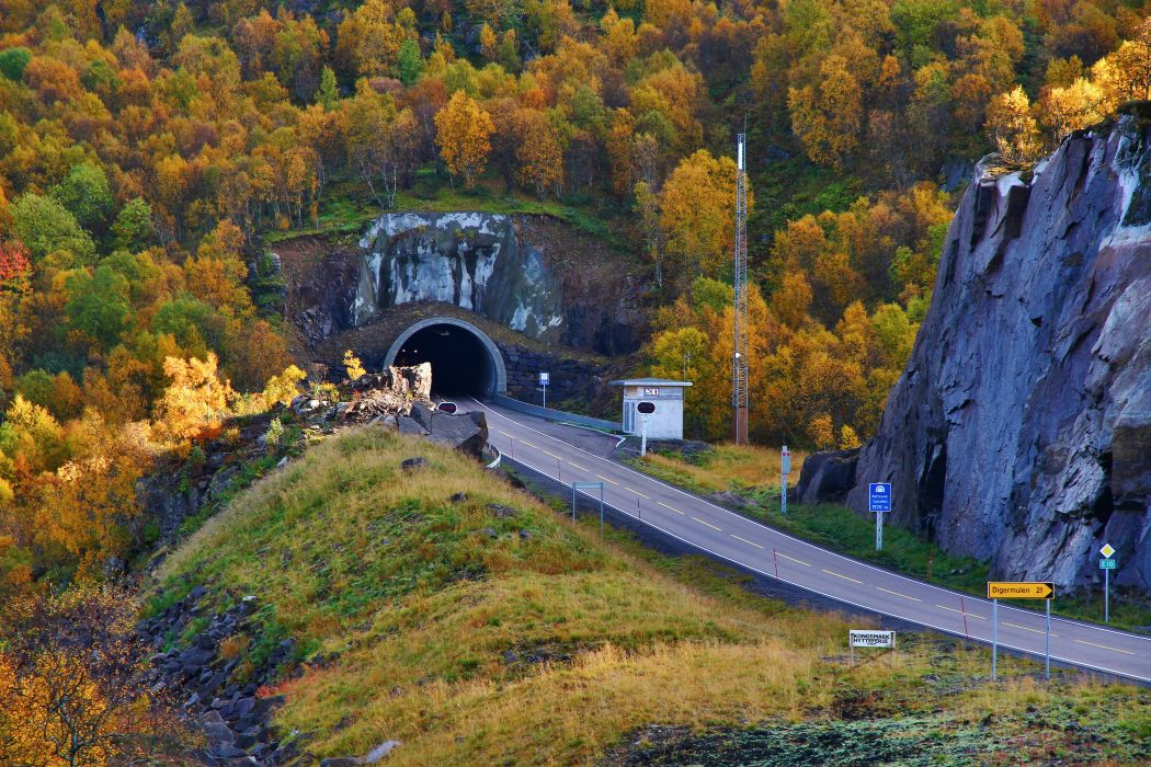 nature trees tunnel autumn fall mountains wallpaper