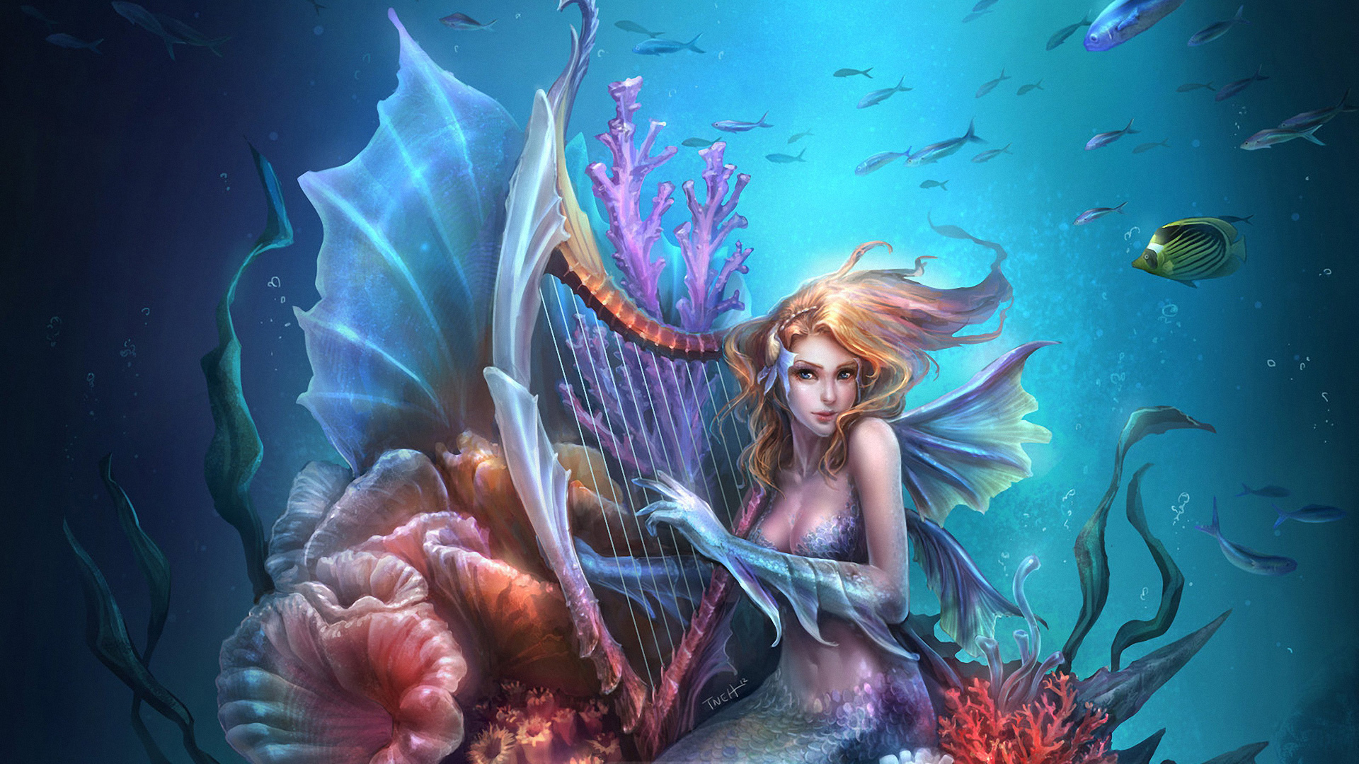 wallpaper beautiful mermaid pictures - photo #27