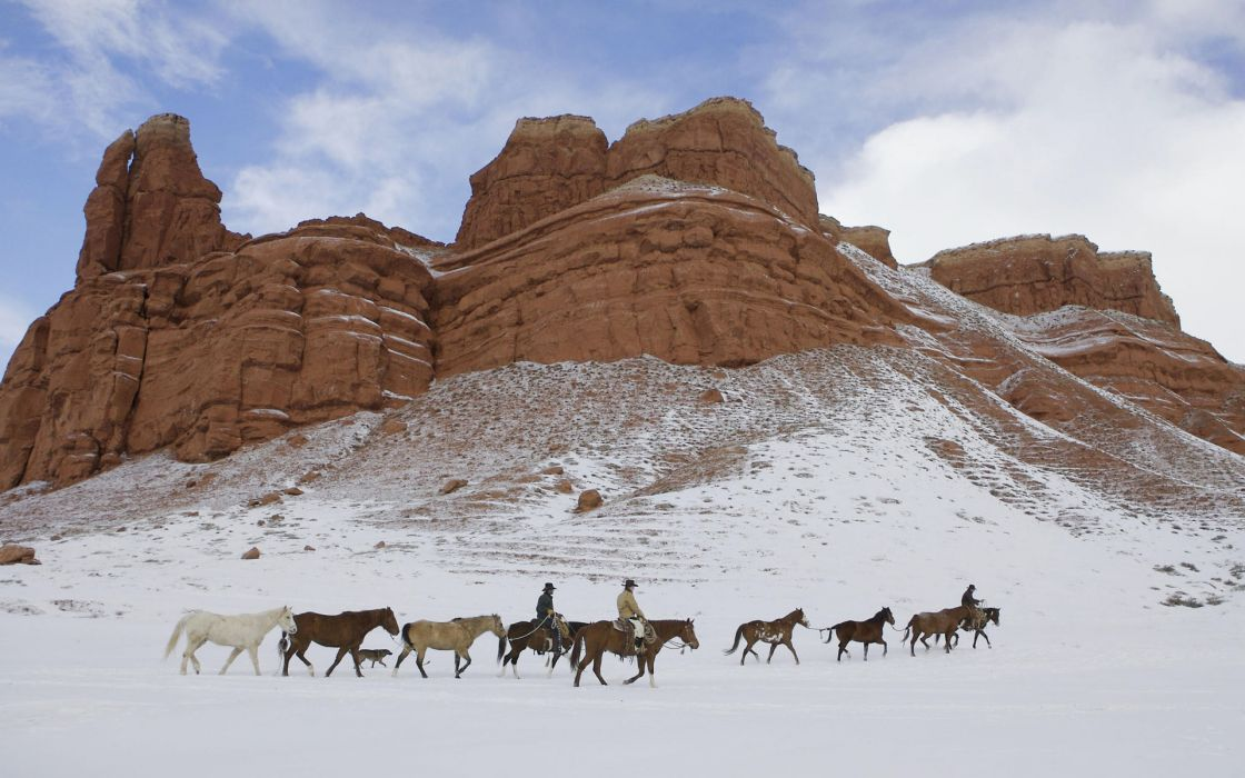 landscapes horses mountains winter wallpaper