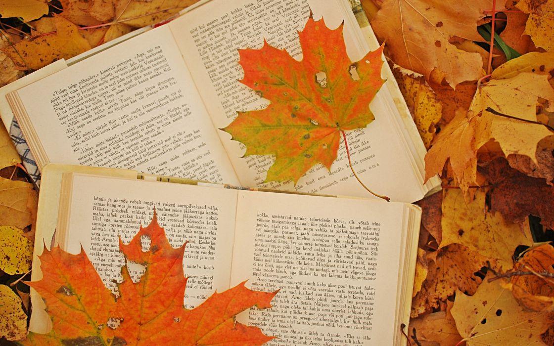 bokeh mood book autumn fall wallpaper