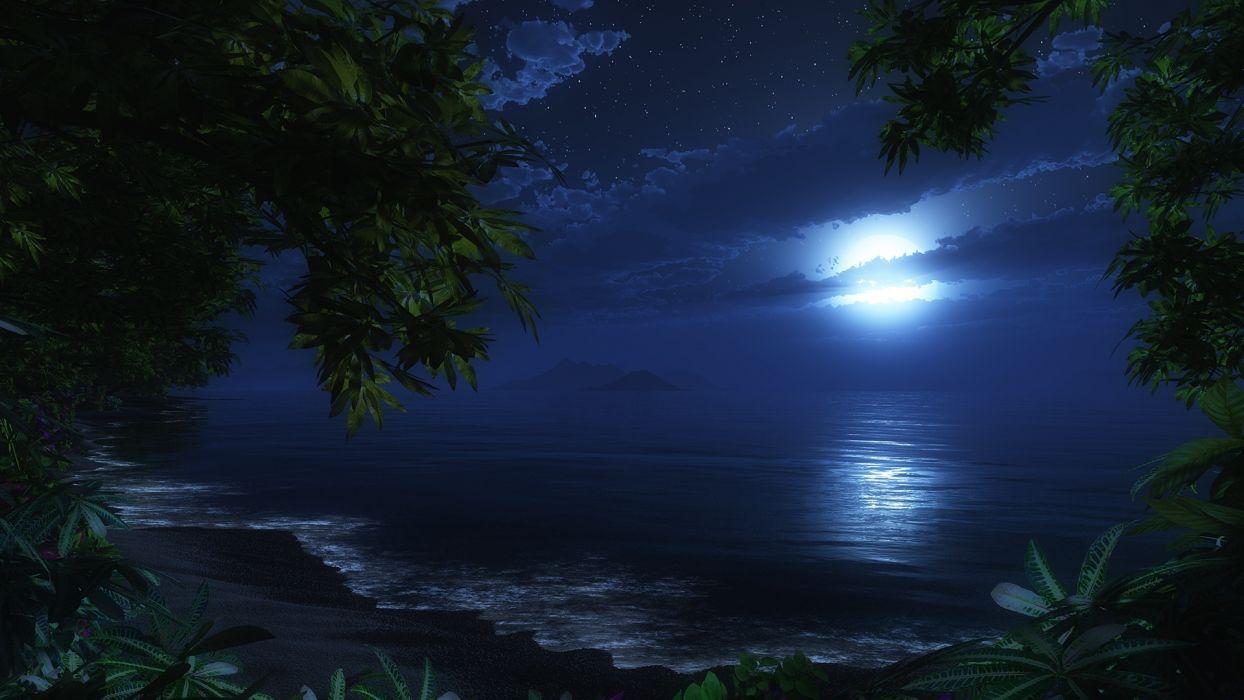 cg digital art nature ocean beaches waves sky night trees tropical jungle  wallpaper
