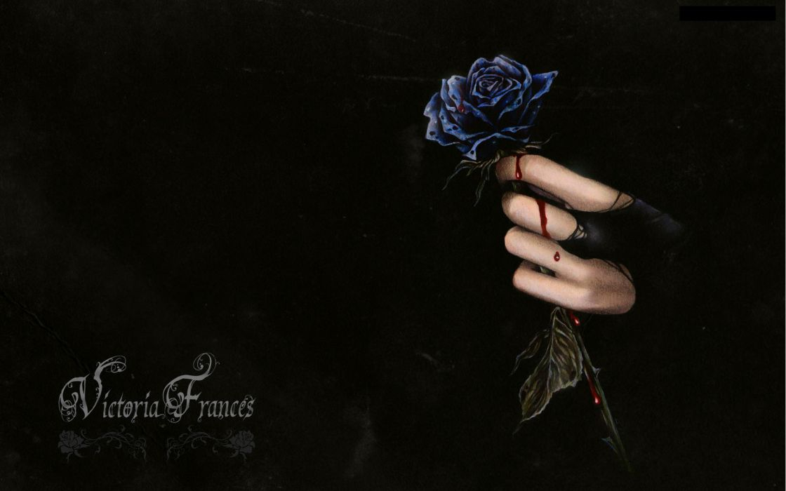 dark horror fantasy gothic vampire blood flowers wallpaper