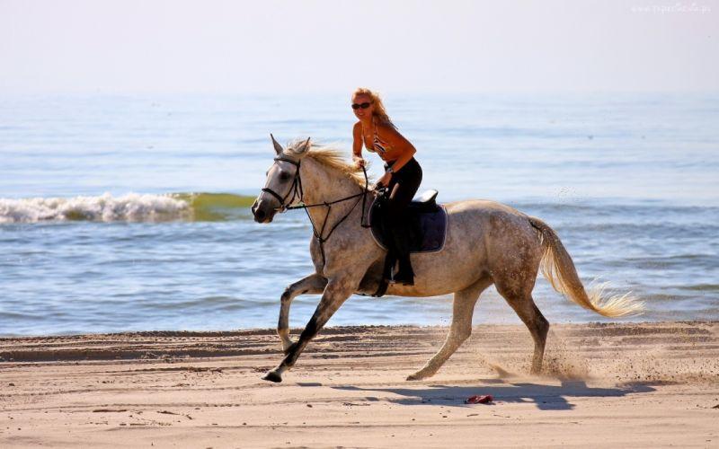 women model blonde sexy babes animals horses beaches ocean waves wallpaper
