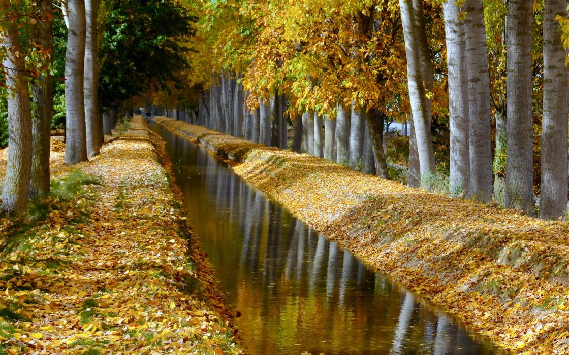landscapes autumn fall leaves reflection trees forest wallpaper