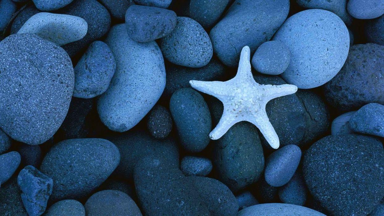 beach seas stars world rocks mexico california bokeh mood wallpaper
