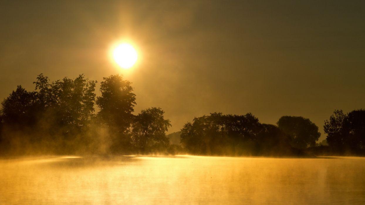 sunrise trees reflection fog wallpaper