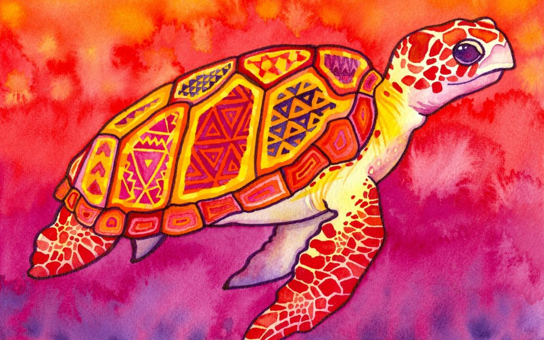 watercolor paintings turtles patterns abstract sea turtle watercolor sea turtles colorful abstract multicolor wallpaper