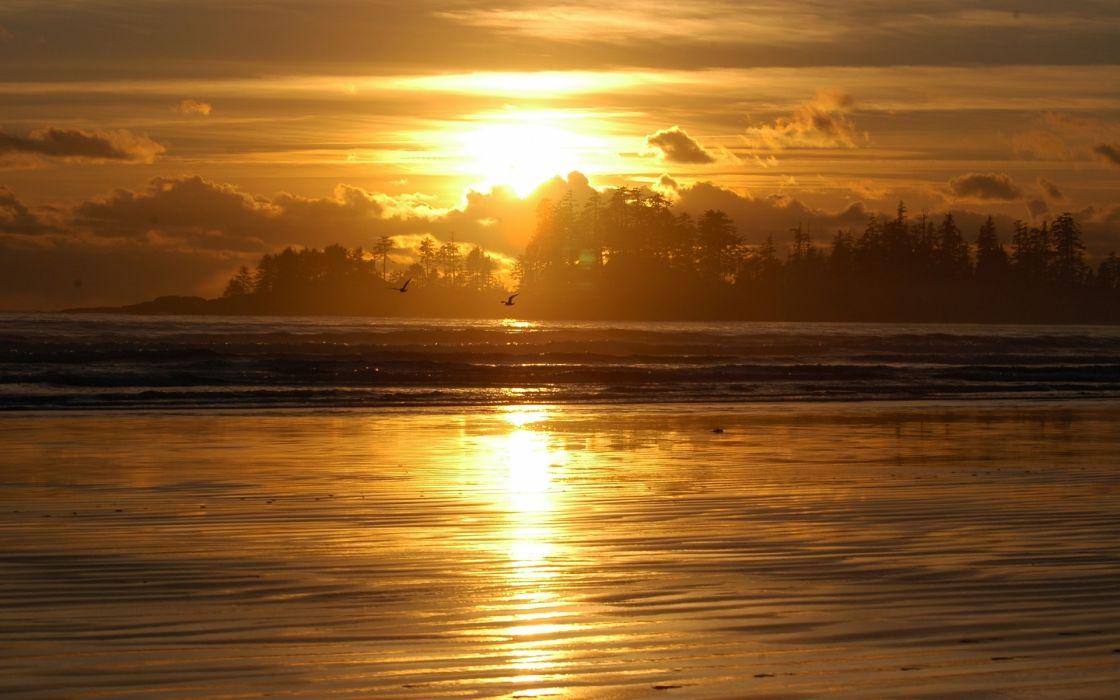 1920x1200 sunset clouds landscapes nature beach sand shore sunlight oceans reflections birds wallpaper