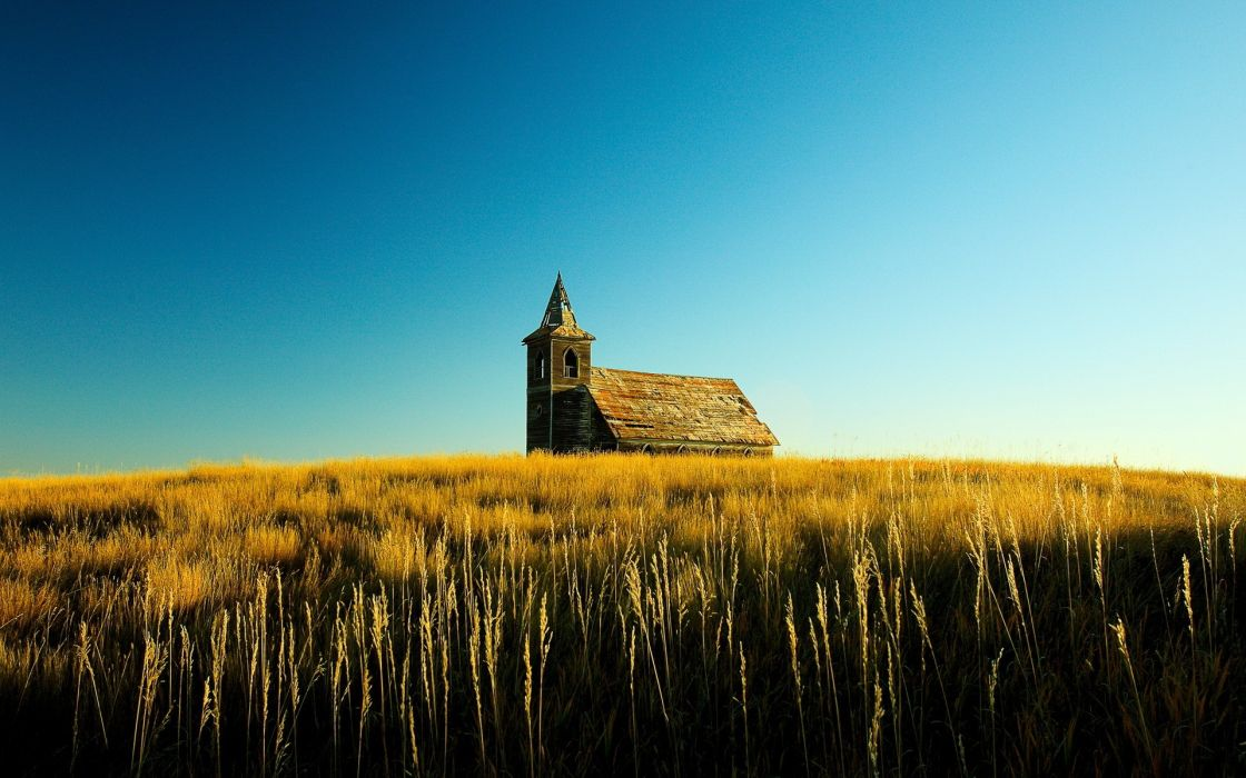 landscapes nature church cathedral religion decay ruin grass wheat wallpaper