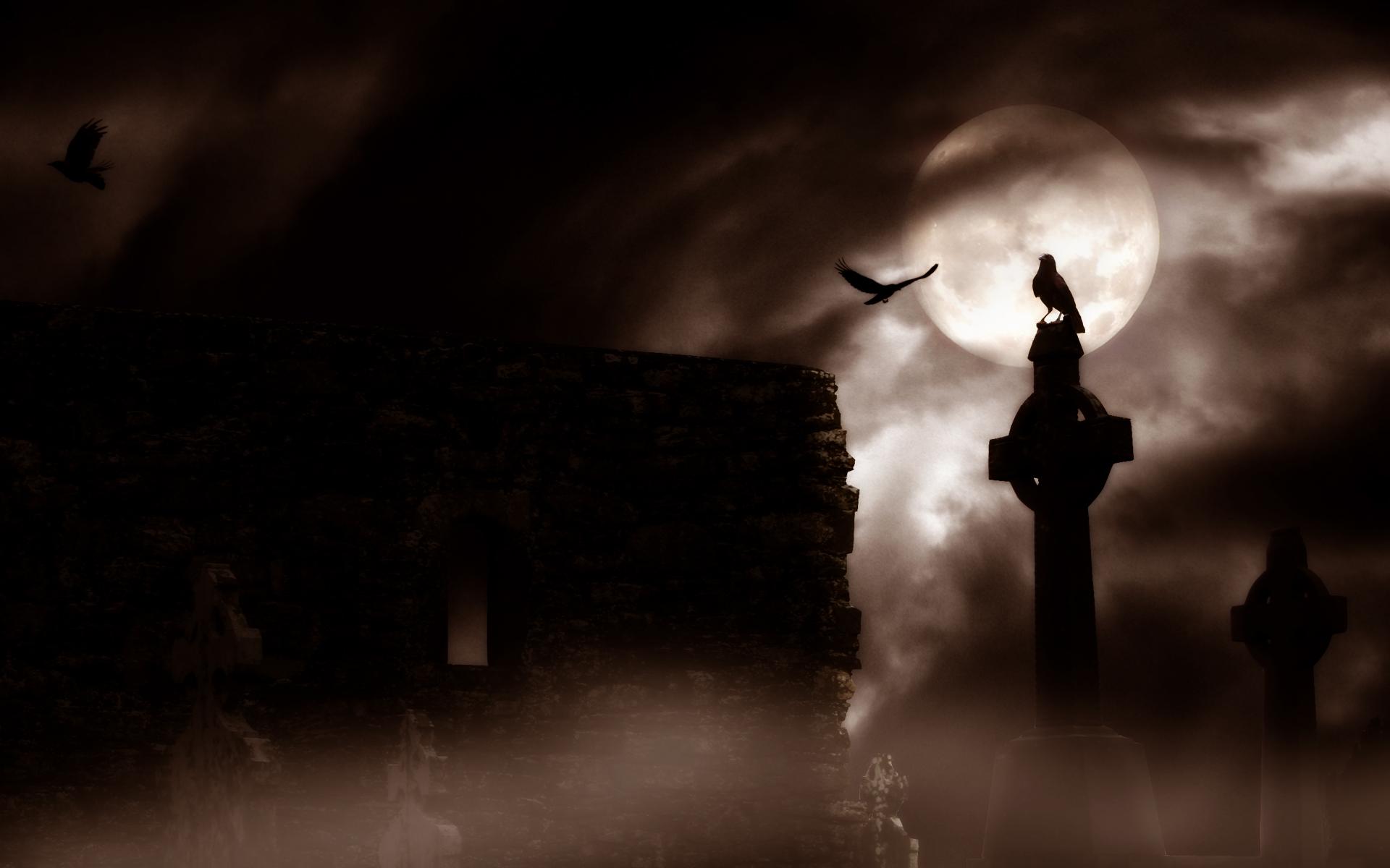 Dark Horror Gothic Raven Cemetery Graveyard Halloween Wallpaper X  Wallpaperup
