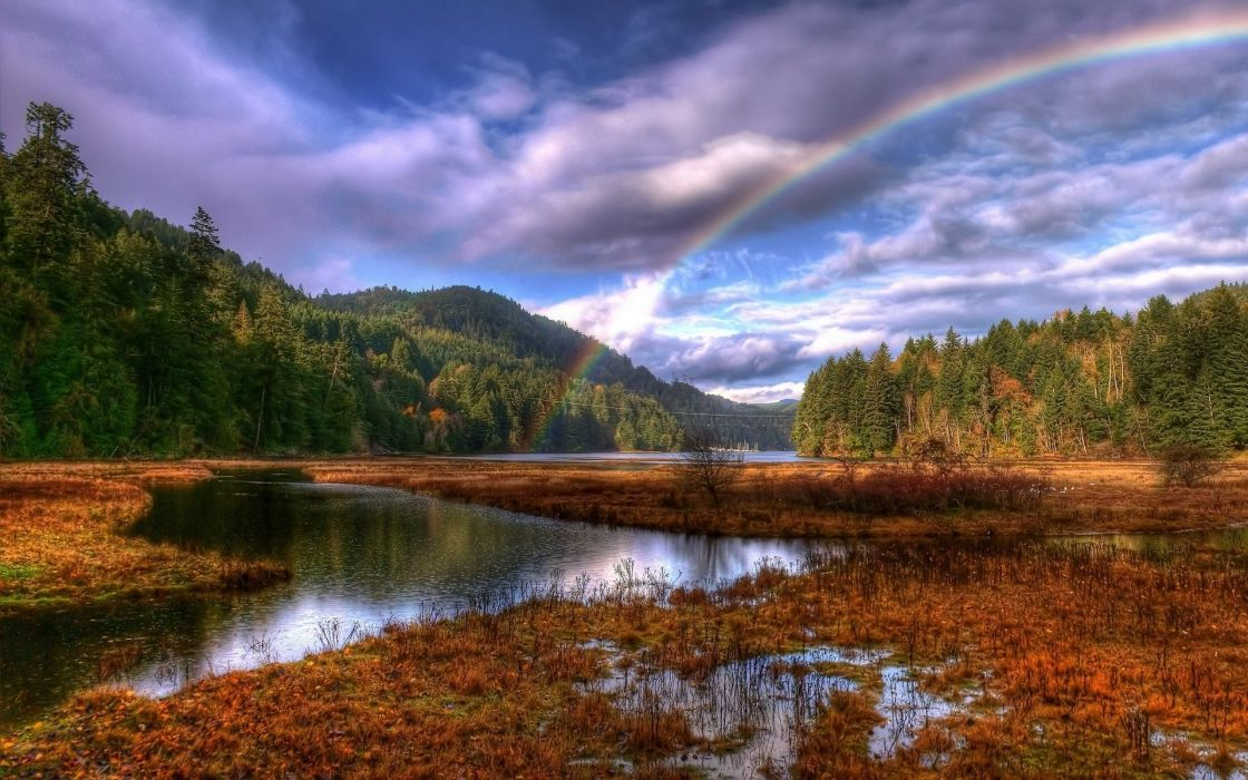 landscapes sky rainbow trees wallpaper