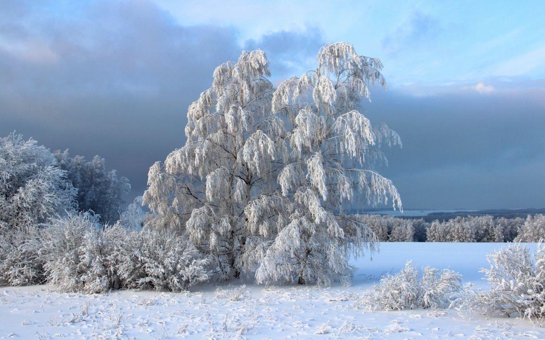 winter snow sky wallpaper