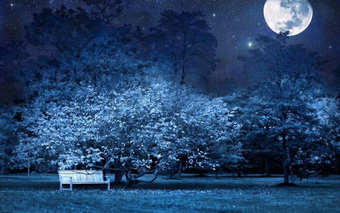 night bench park trees stars full moon sky light darkness bench sky night moon cg digital art manip wallpaper