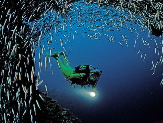 Scuba diving people mask underwater fishes ocean caves nature wallpaper