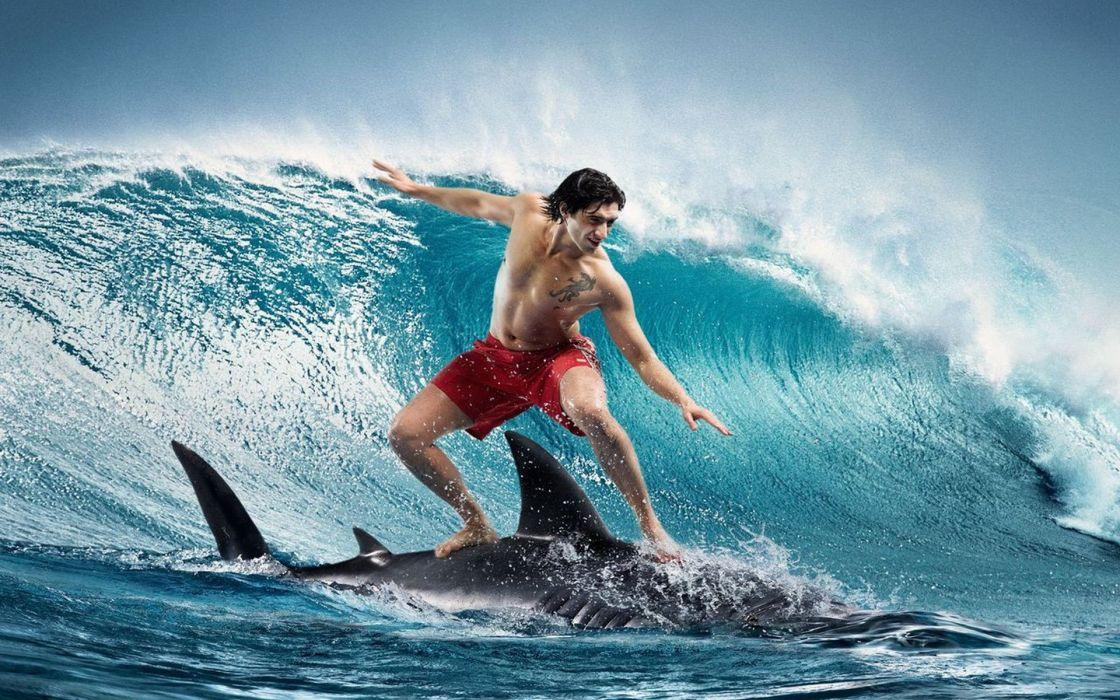 surfing humor sadic shark ocean waves men wallpaper