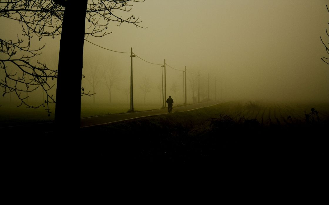 mood alone nature landscapes trees fog dark people roads wallpaper