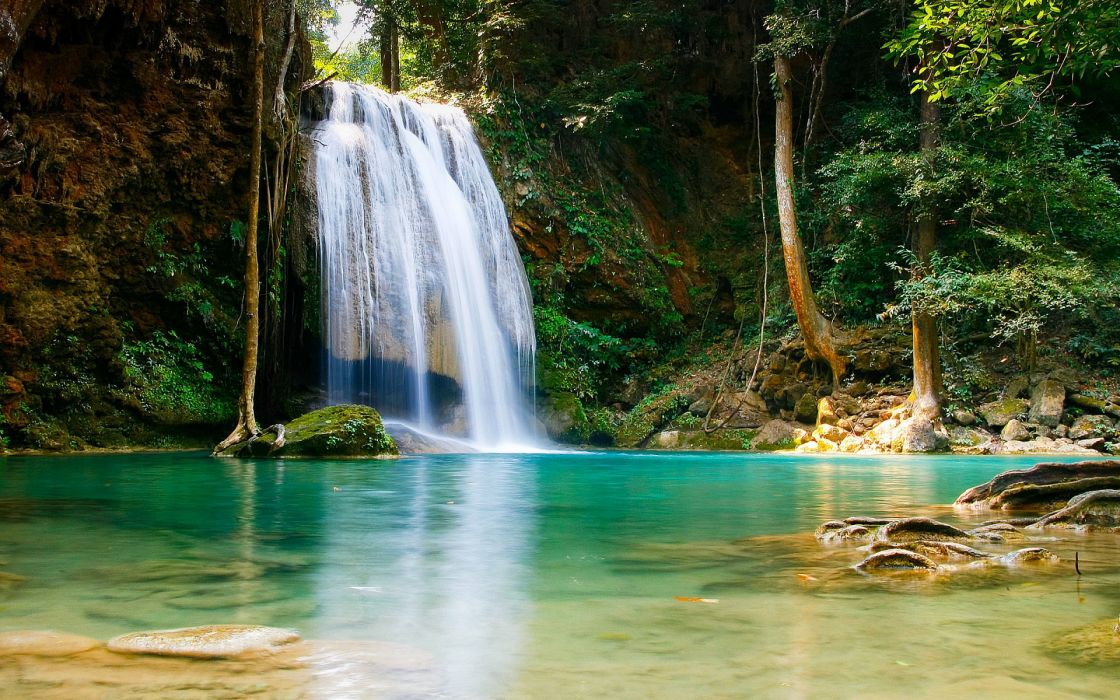 rivers landscapes trees forest pool water wallpaper