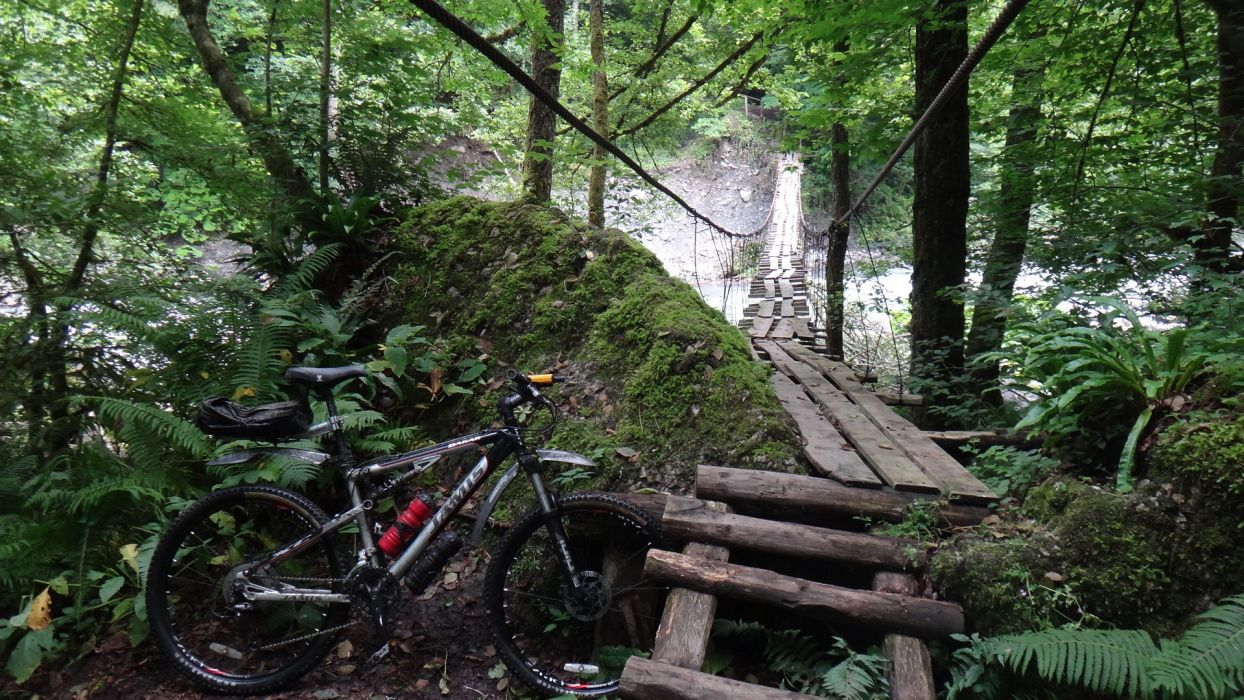mountain bike bicycle bridges nature landscapes trees forest sports wallpaper