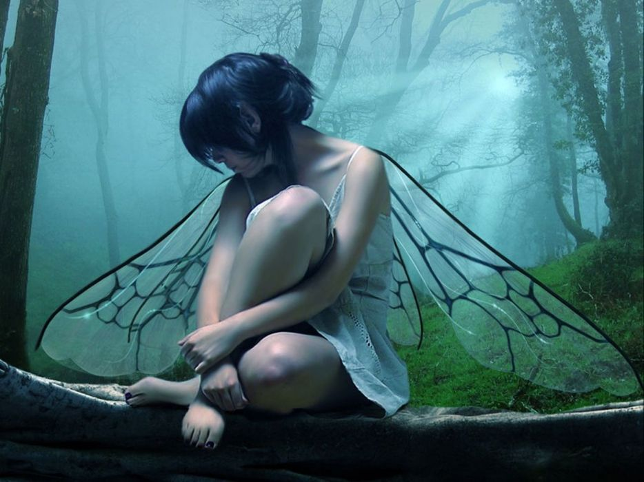 fantasy art fairy wings trees forest landscapes cg digital women gothic mood wallpaper