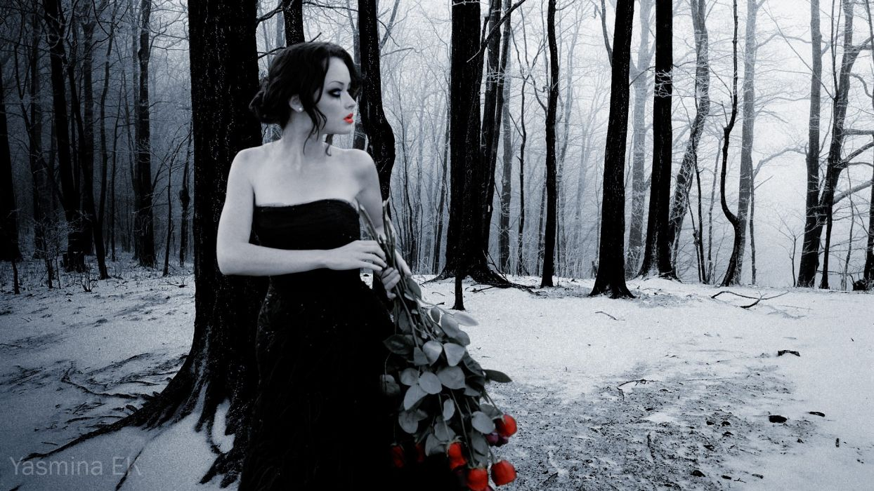 mood gothic pale bouquet roses love romance alone nature trees forest winter snow cg digital art manip wallpaper