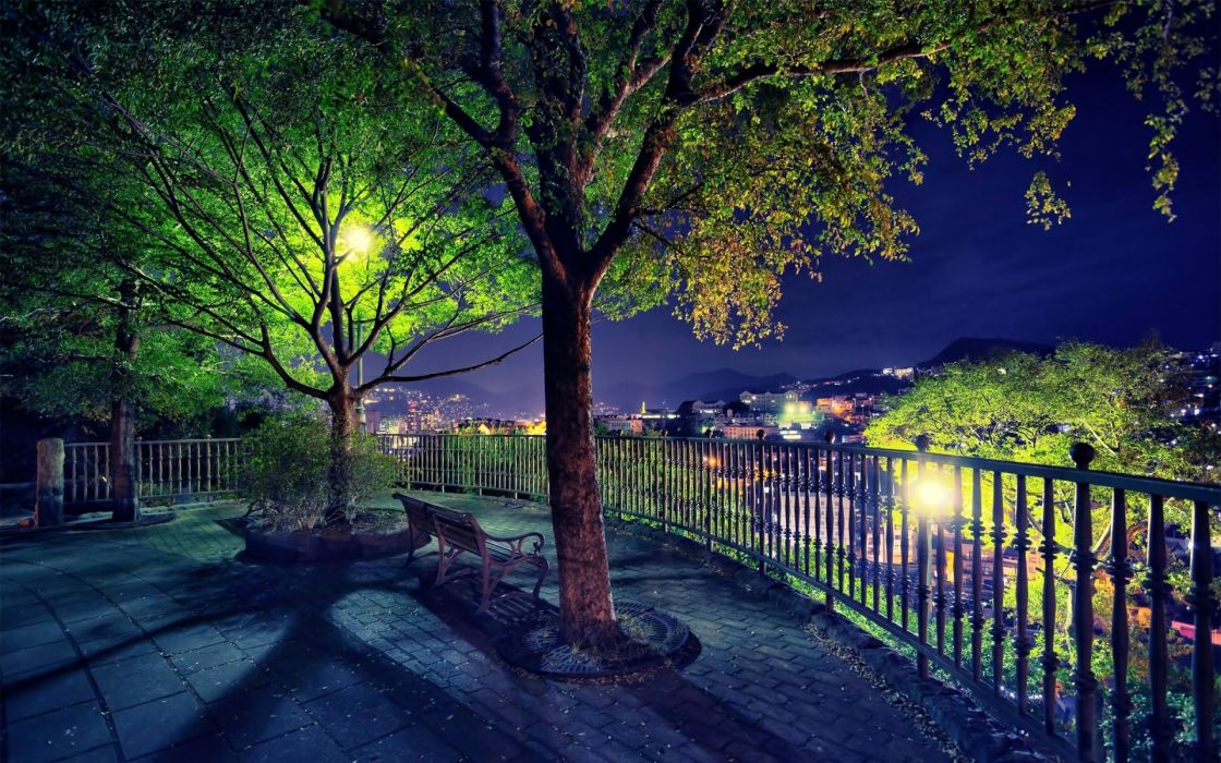 park garden bench trees night lights lamp post fence railing view scenic wallpaper