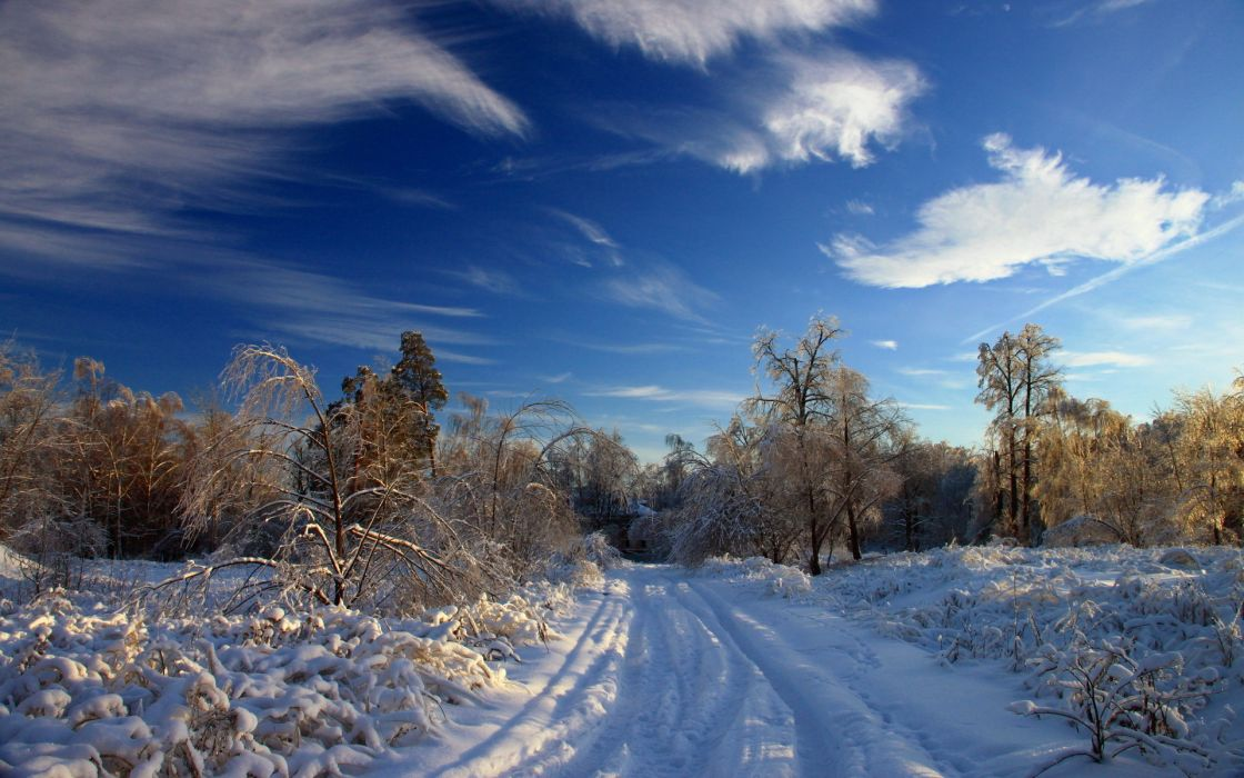 landscapes nature winter snow trees sky clouds wallpaper