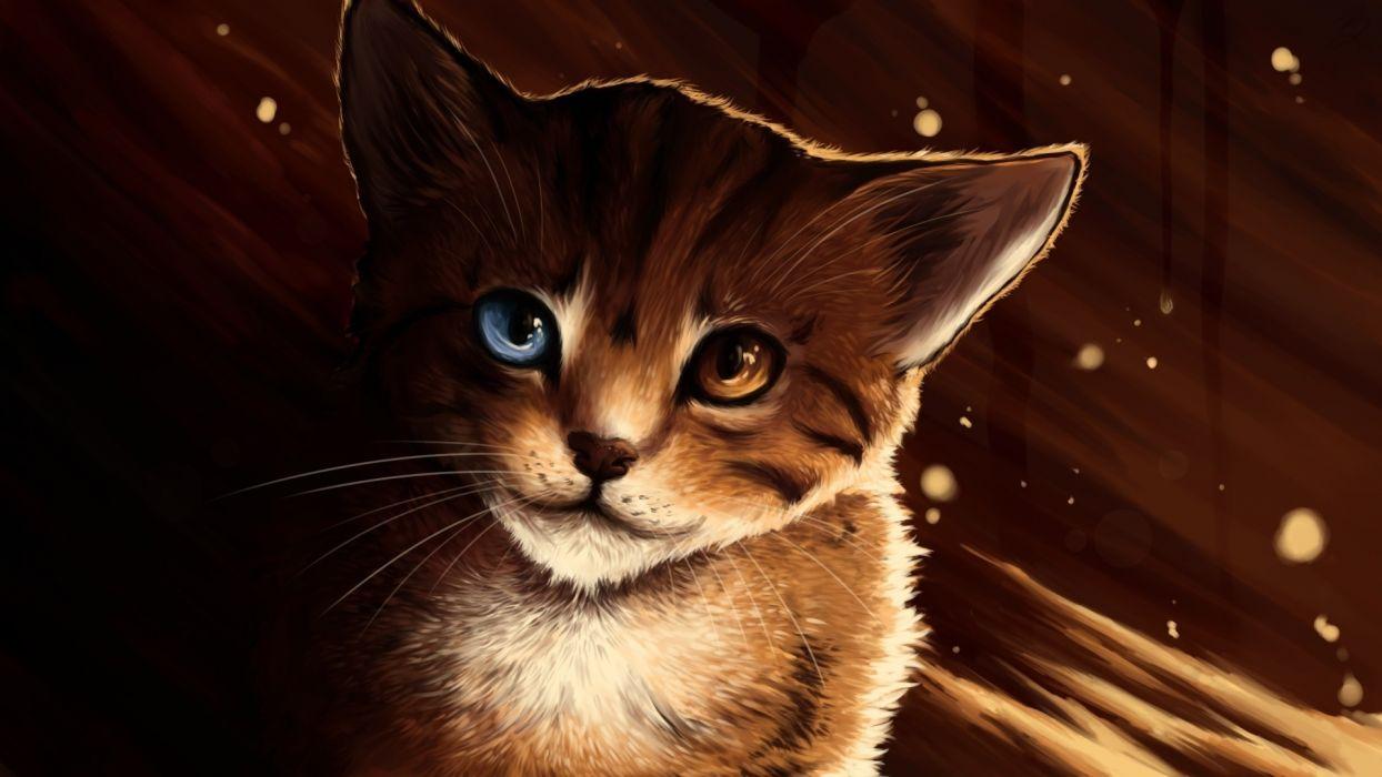 art eyes kittens cute wallpaper
