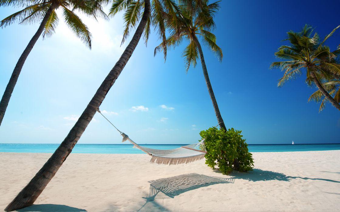 tropical ocean sea palm sunlight hammock wallpaper
