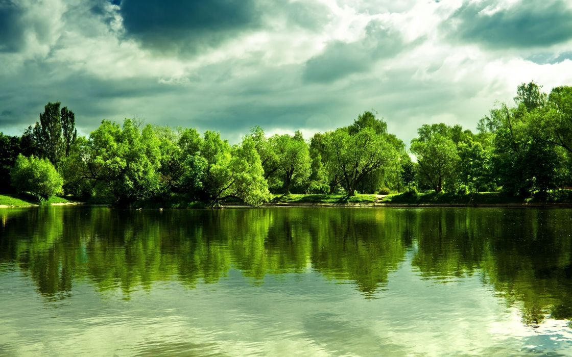 trees forest shore reflection sky clouds wallpaper