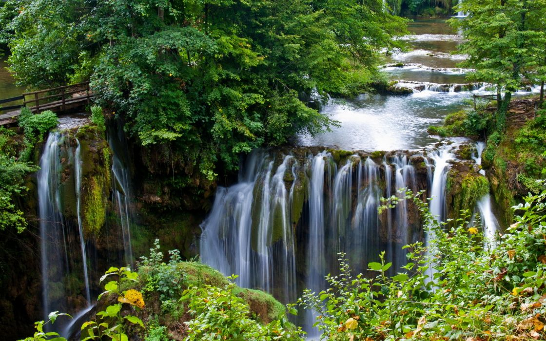 landscapes rivers trees forest wallpaper