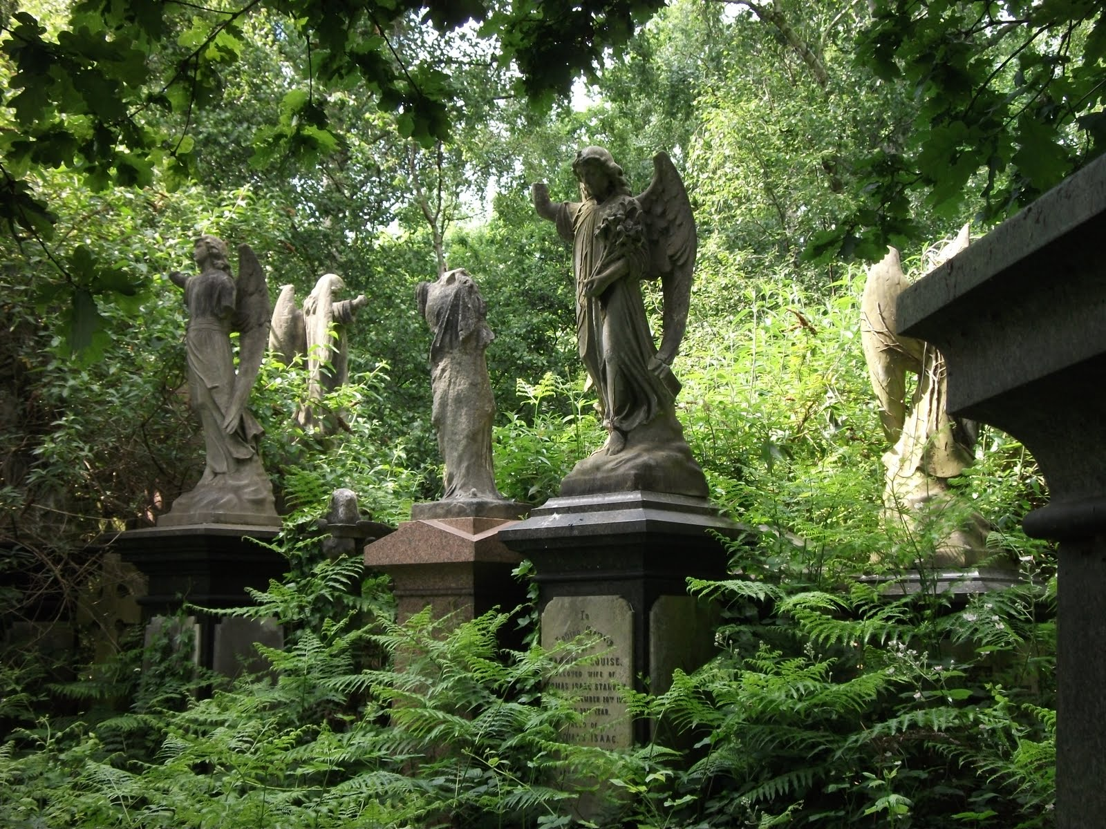 cemetery in the forest - photo #25