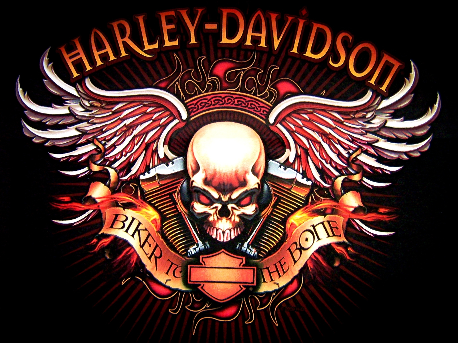 Harley Davidson logo skull bikes motorcycle wallpaper background