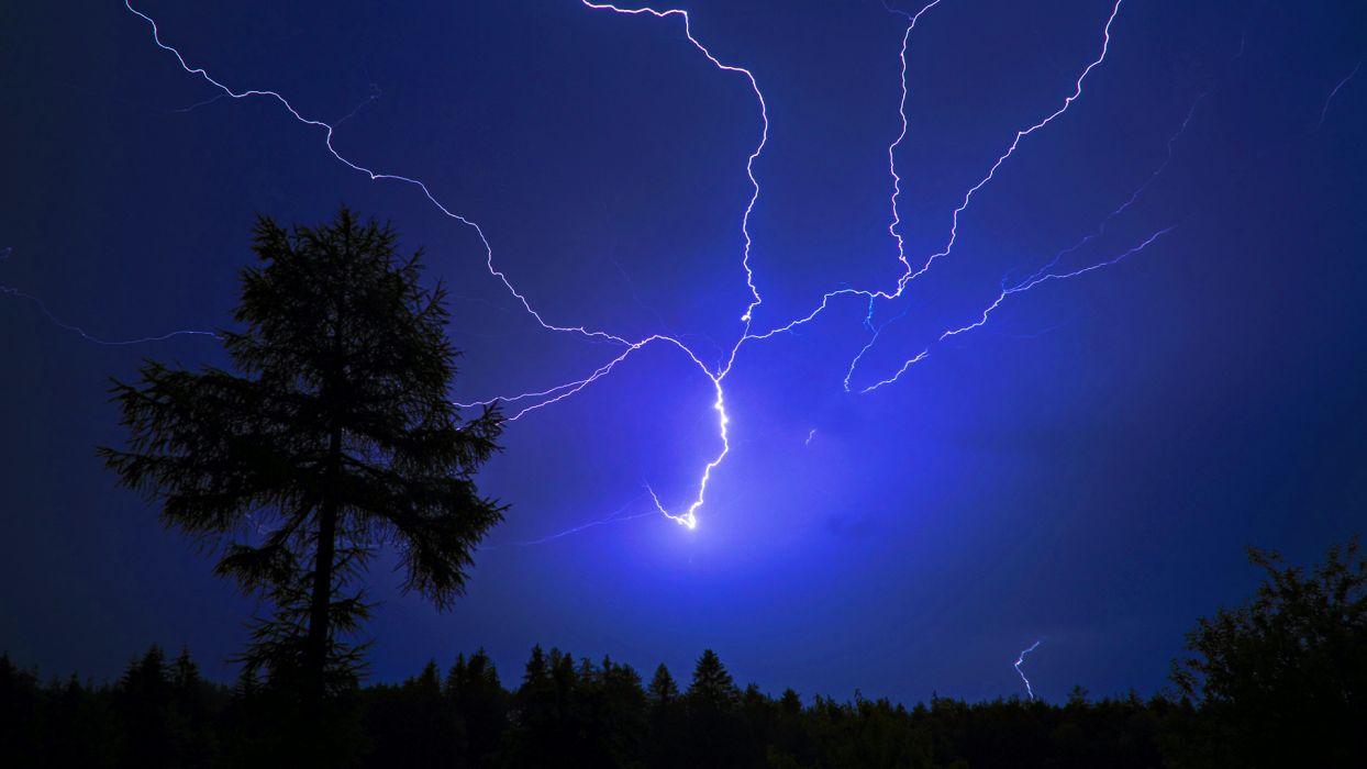 landscapes trees night storm lightning electric wallpaper