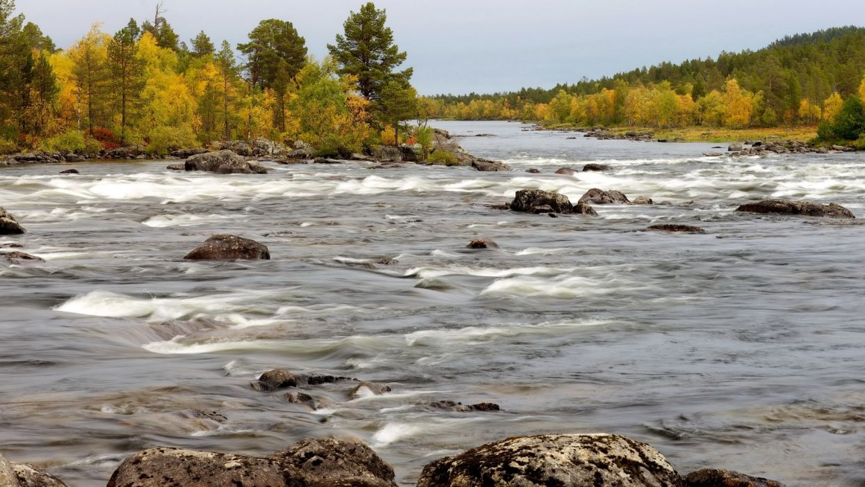 landscapes rapids stream trees forest woods autumn fall wallpaper