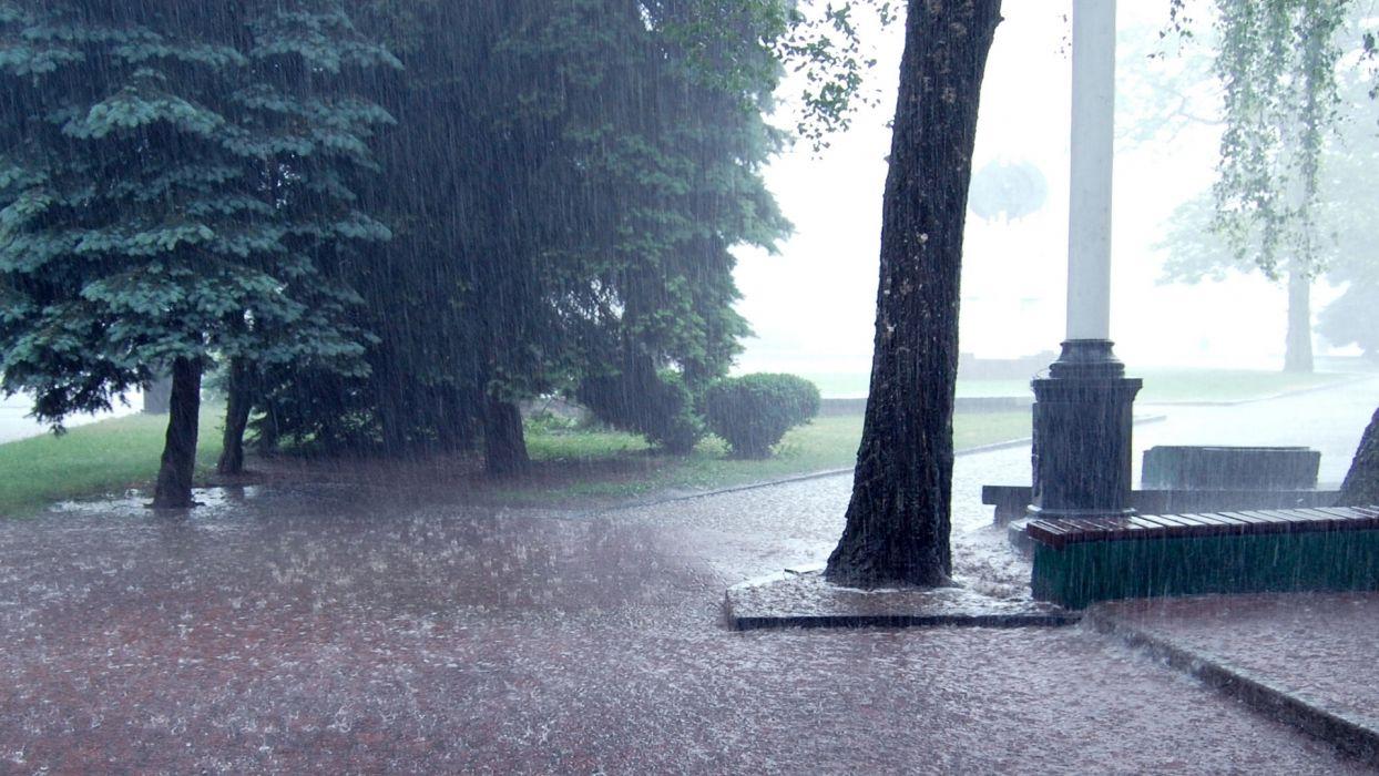 storm rain drops splash spray park path trail sidewalk trees landscapes wallpaper