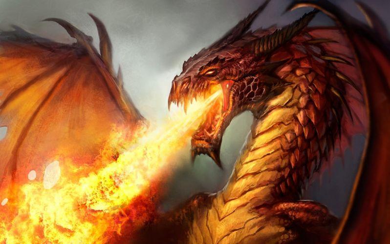 fantasy art drogon fire flames wings wallpaper