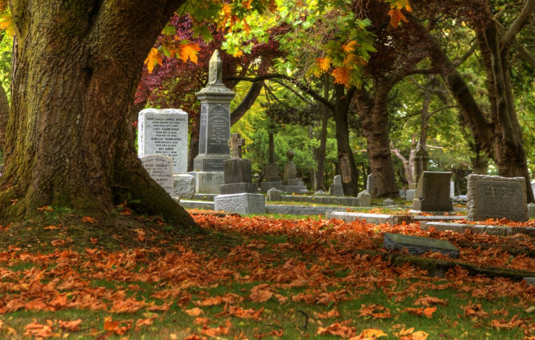 cemetery grave headstone gothic trees leaves autumn fall wallpaper