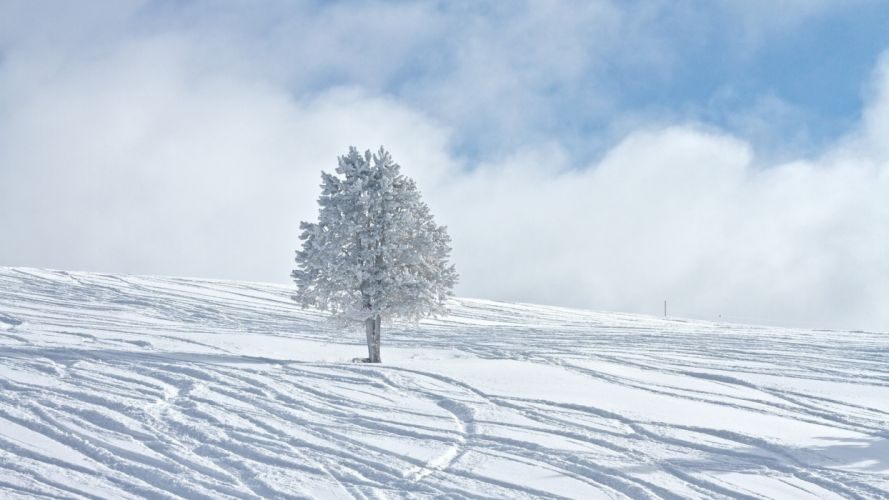 mountains winter snow trees sky clouds wallpaper