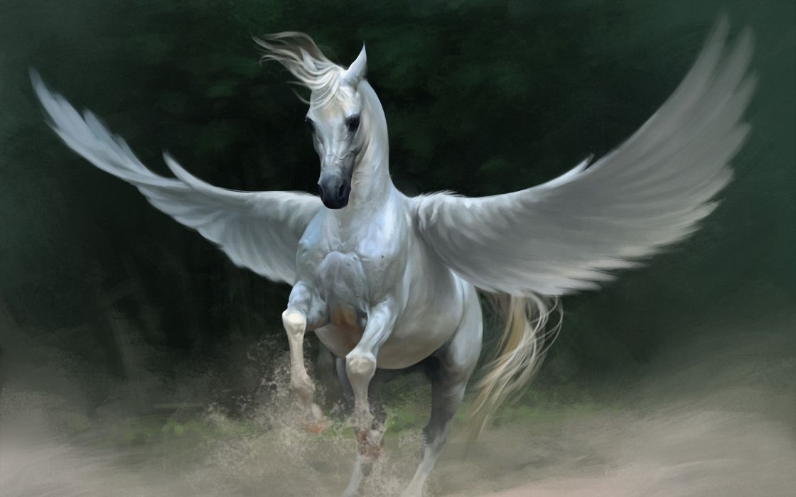 fantasy art cg digital manip wings pegasus horses wallpaper
