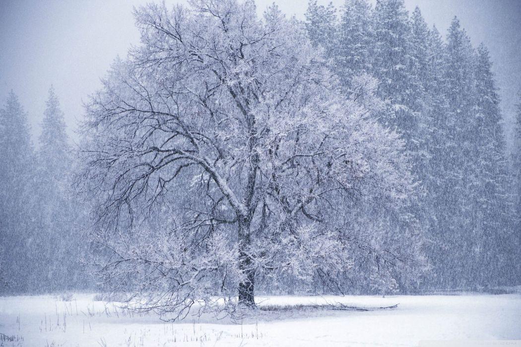 landscapes storm blizzard snowing flakes drops fields wallpaper
