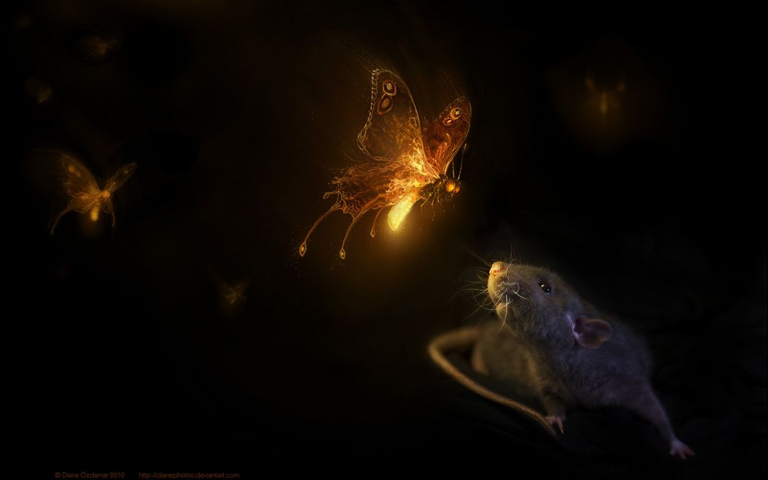 fantasy art cg digital mice mouse cute butterfly magic wallpaper