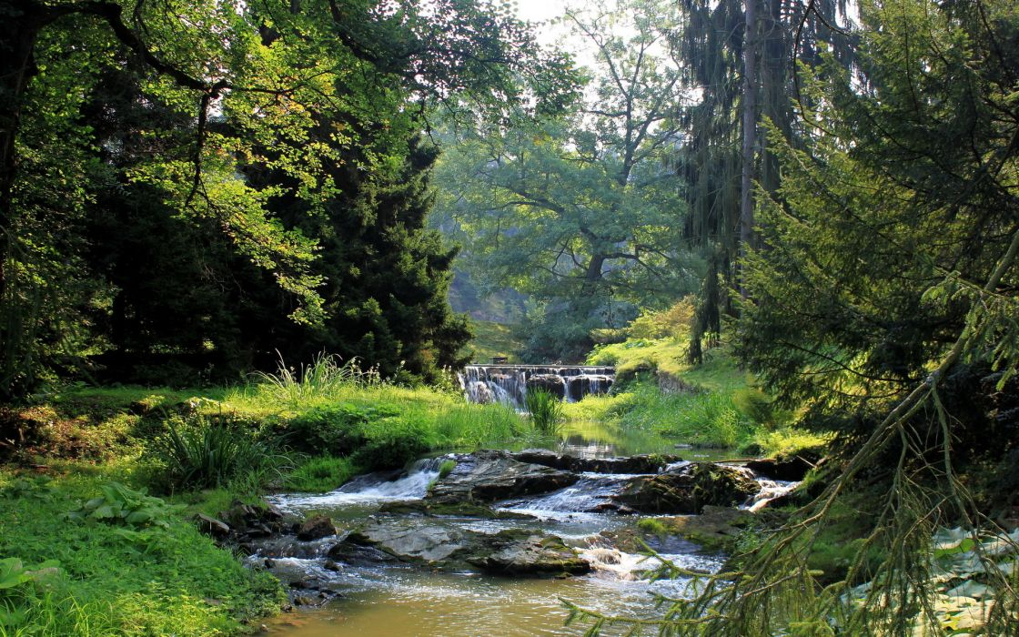 landscapes streams waterfall trees forest woods wallpaper