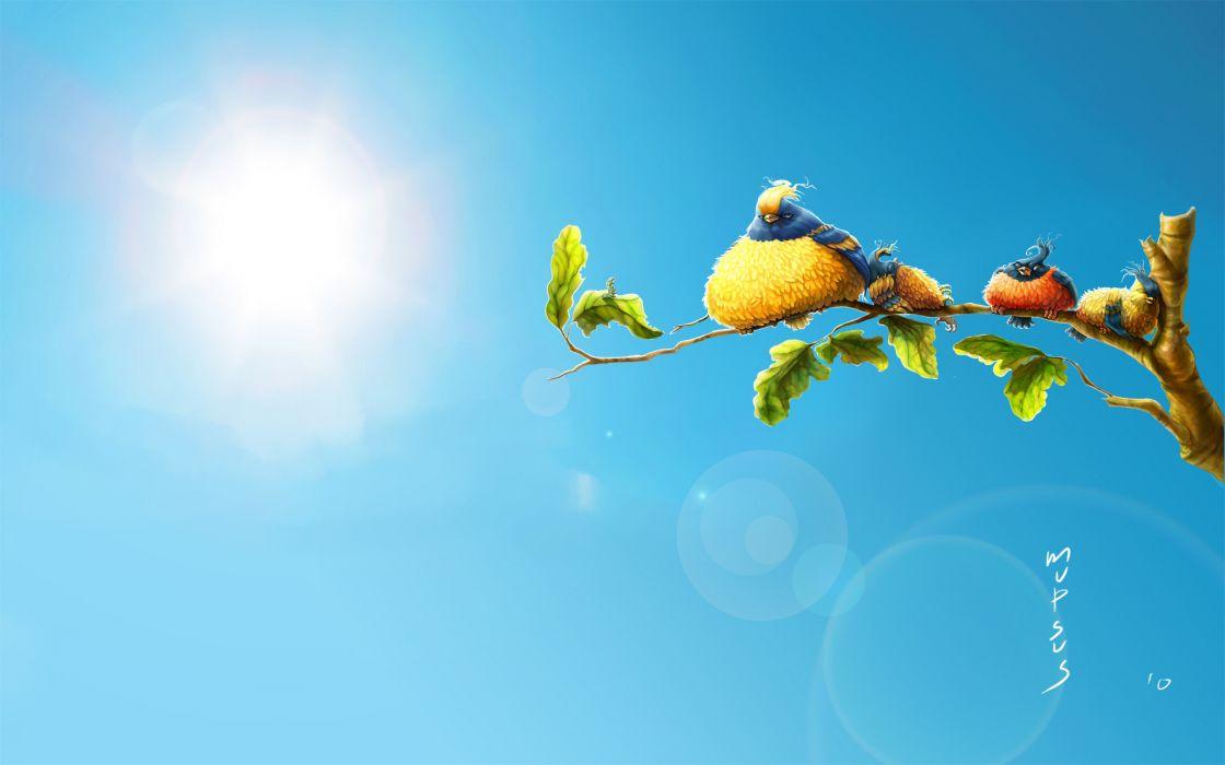 Angry Birds cartoon animals nature sun sky humor wallpaper