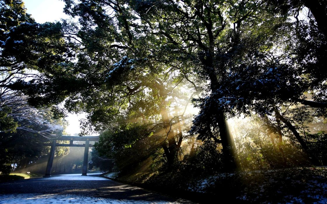 landscapes trees filtered sunlight beam rays roads path trail leaves sidewalk asian oriental snow winter arch wallpaper