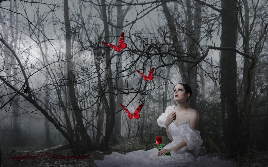fantasy art cg digital manip butterfly mood gothic gown emotion women models pale face brunettes nature landscapes trees forest woods night fog moonlight moon wallpaper