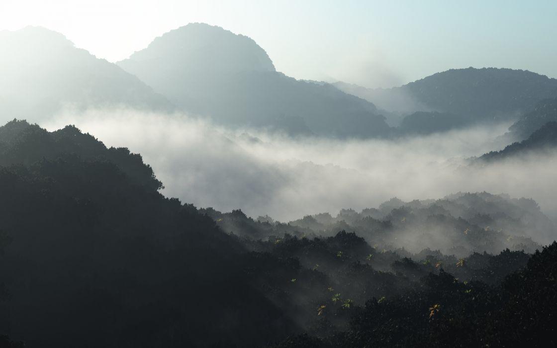 landscapes mountains trees jungle forest fog mist sunlight wallpaper