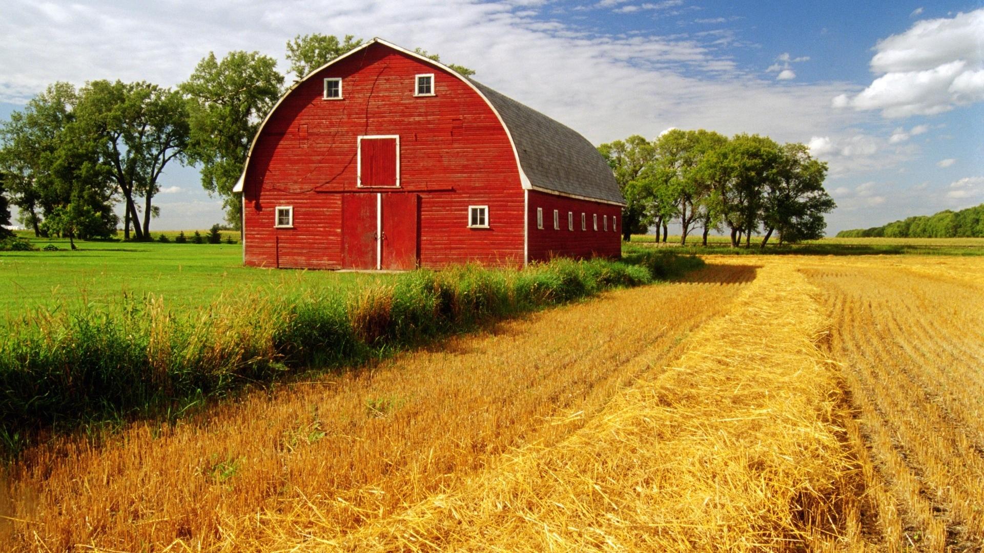 Barn Rustic Farm Landscapes Fields Crop Grass Sky Clouds Wallpaper |  1920x1080 | 34896 | WallpaperUP