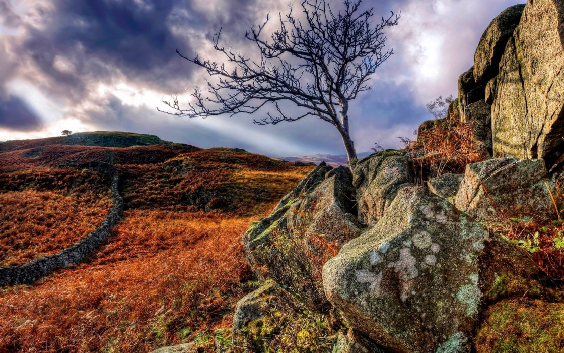 hdr stone wall fence rocks tree sky clouds hills wallpaper
